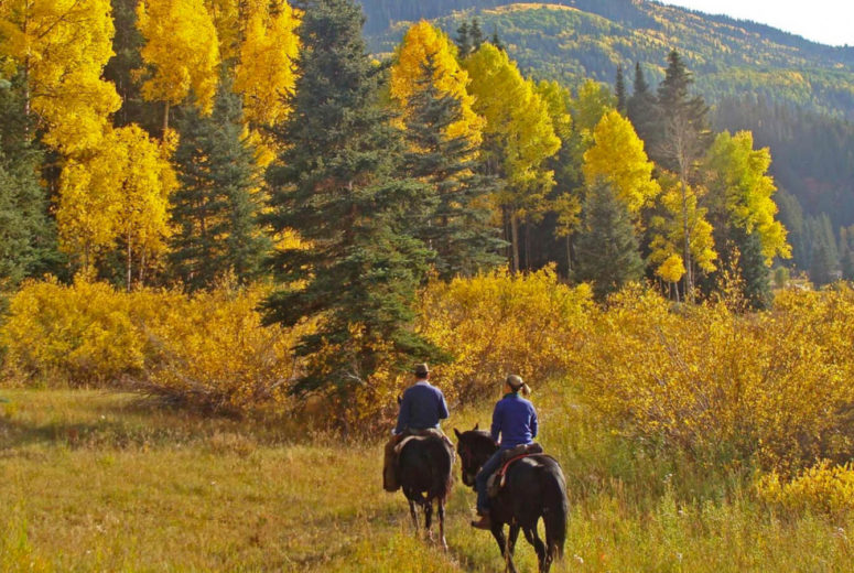 Fall riding at Dunton