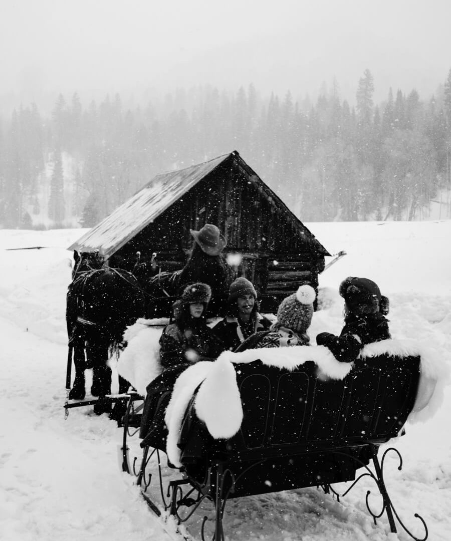 Guests on a horse drawn sled in the snow