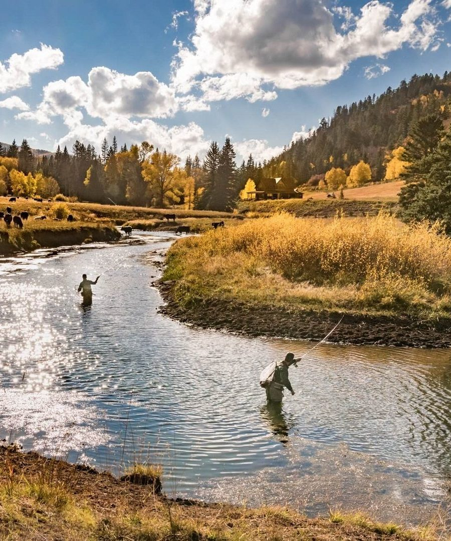 Fly Fishing on the West Fork